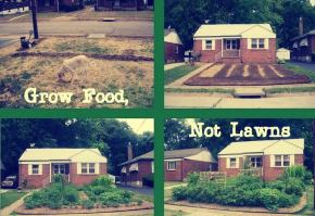 Landlord Charged for Front Yard Garden - Tenant and Neighbors Fight Back